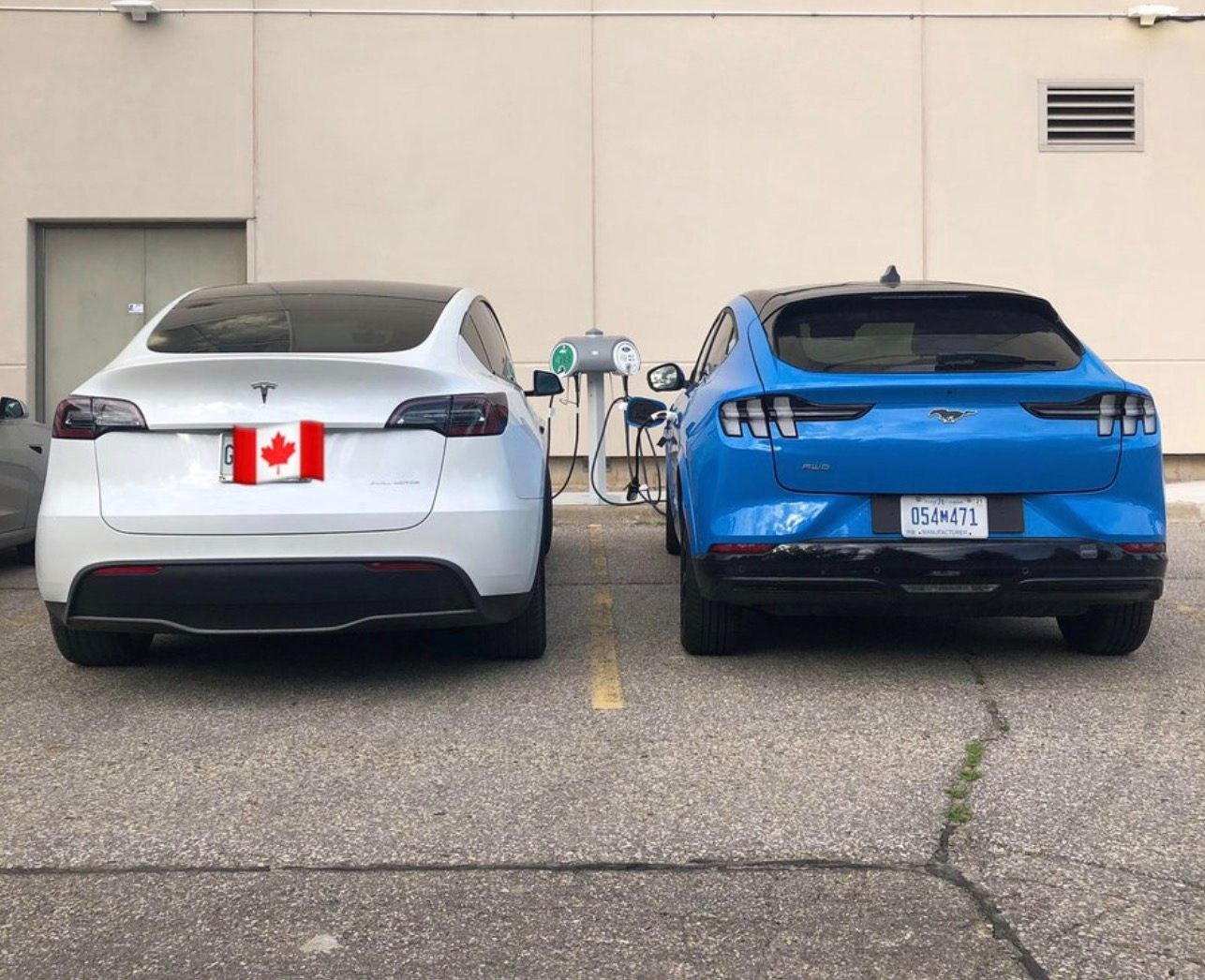 First picture of Tesla Model Y and Mustang Mach-E side by side as Ford benchmarks them