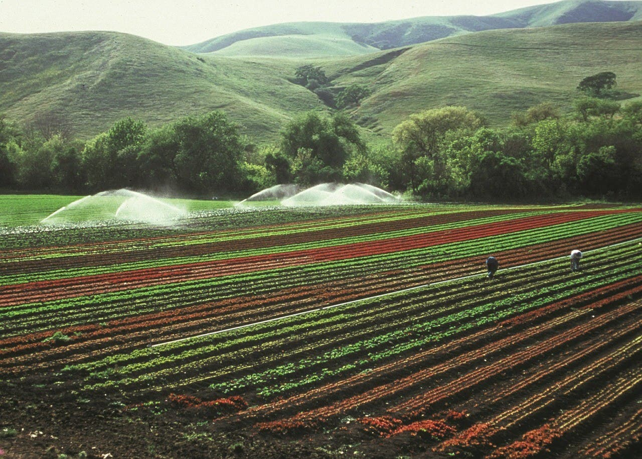 Irrigation and farms